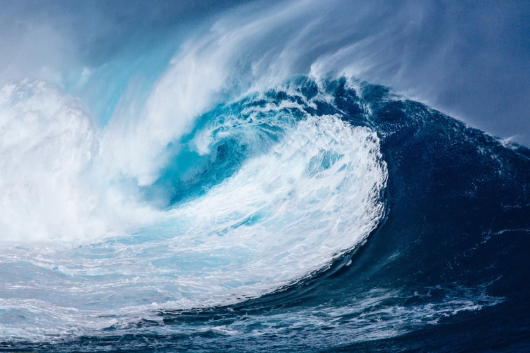 El océano, fuente (agotable) de vida
