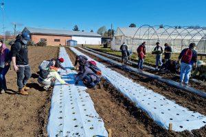 Estudiantes y académicos de Agronomía UdeC retornan paulatinamente a la presencialidad